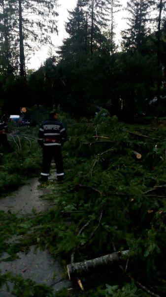 Stațiunea Moneasa din Arad, distrusă de furtună (1)