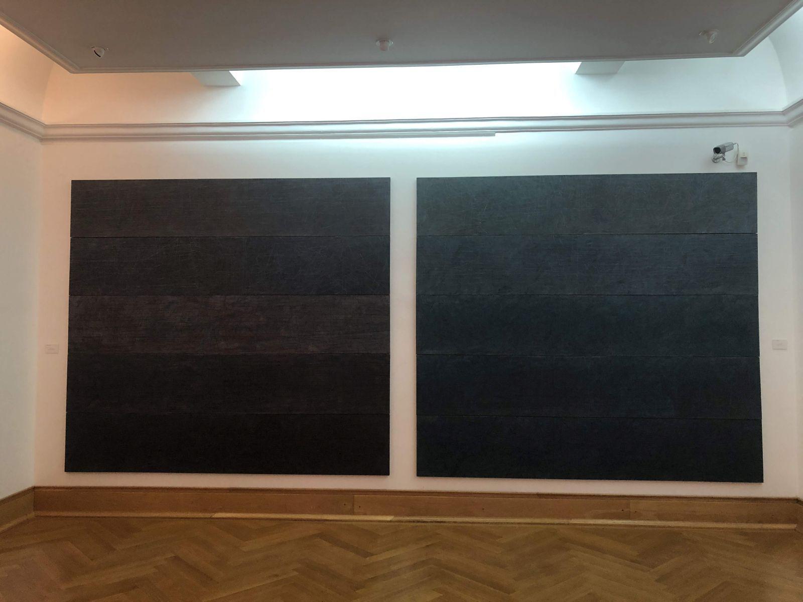 """REPORTAJ: Arta din fân! Un deal întreg din Bucovina """"a invadat"""" Muzeul de Artă din Timișoara: """"Am vrut ca vegetalul să inunde spațiul nostru cotidian"""""""