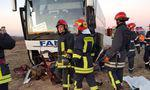 accident masina-autocar-ISU Timis4