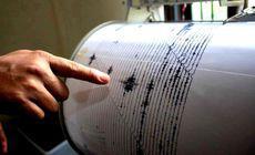 Cutremur în judeţul Vrancea, joi dimineaţa. Ce magnitudine a avut
