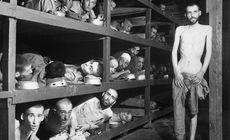 Țara în care un pasaj din legea cu privire la Holocaust a fost declarat neconstituţional