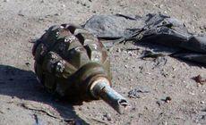 Doi copii au găsit o grenadă din Al Doilea Război Mondial, într-un râu din Germania. În ce stadiu se afla dispozitivul exploziv