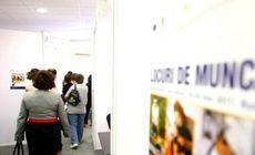 Care sunt cursurile cele mai solicitate de către şomerii din județul Olt