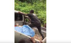 VIDEO | Momentul în care un bărbat încearcă să împingă o camionetă… suit în portbagaj