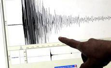 Cutremur cu magnitudinea 4 în zona Vrancea, miercuri seara