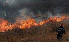 Un bărbat a ars de viu după ce chiar el a aprins a dat foc vegetației uscate din grădină!