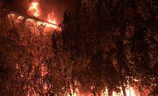 Incendiu de proporții în Complexul Studențesc din Timișoara / FOTO&VIDEO