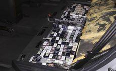 Captură impresionantă de țigări de contrabandă la vama din Vaslui, făcută de un câine polițist