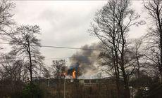 VIDEO| Incendiu la cea mai mare grădină zoologică din Marea Britanie