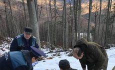 Doi pădurari din cel mai mare ocol silvic din Gorj cred că vor fi dați afară tocmai pentru că au sesizat tăierile ilegale de lemne