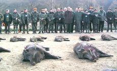 A început vânătoarea de la Balc, organizată de Ion Țiriac. Ce măsuri au luat autoritățile, în contextul pestei porcine