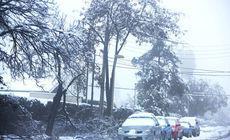 Gerul și ninsorile revin în toată țara. Care sunt zonele afectate