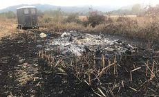 Pedepse dure pentru criminalii lui Doru și Costel, doi ciobani români ucişi în Italia