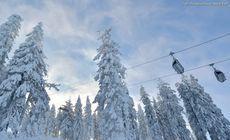 Telescaunul din Poiana Brașov a fost redeschis. Săptămâna trecută, mai mulţi copaci au căzut peste cabluri