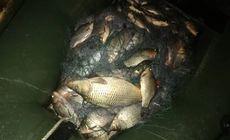 Caz de braconaj piscicol, în Sălaj. Cum au reușit doi bărbați să prindă 140 kg de pește (FOTO & VIDEO)