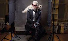 FOTO | Ce a apărut pe contul lui Choupette, pisica care va moșteni averea lui Karl Lagerfeld, după moartea designerului