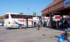 LIBERTATEA TE AJUTĂ: Noile linii regionale București-Ilfov.  Indicativele autobuzelor și traseele