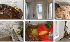 VIDEO | Imagini terifiante de la o firmă de catering din Timișoara care pregătea mâncare pentru grădinițe și pentru bolnavii de cancer! Șeful OPC Timiș a făcut totul public