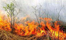 Incendiu de proporţii într-o pădure din Vâlcea. Pompierii au solicitat sprijin aerian de la IGSU