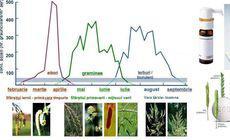 Desensibilizarea, singurul tratament care se adresează cauzei bolilor alergice. Ce presupune și ce trebuie să faci