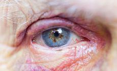 Un bărbat din Neamț a vrut să-și violeze mama de 93 de ani. Cum s-a apărat bătrâna batjocorită