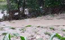 VIDEO / Drumuri și gospodării afectate de inundații, în Vâlcea. Trei localităţi au fost acoperite de ape