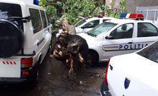Trei mașini de poliție, lovite de un copac doborât de furtună la Brăila