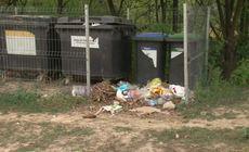 Descoperire șocantă în Cluj. Mai multe oi moarte au fost aruncate în două tomberoane. Măsurile luate de Primărie