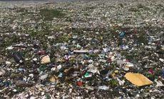 Imagini șocante. Marea, acoperită de un strat de deșeuri atât de gros că nu se vede apa