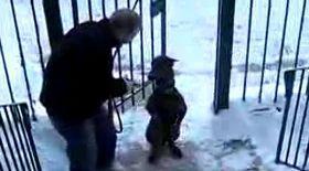 VIDEO / Şi-a învăţat câinele să urce scările în două labe
