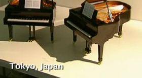 Cel mai mic pian din lume are clape de 4 milimetri
