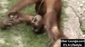 VIDEO: Îşi bea propria urină!