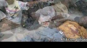 Video / Mutu a filmat pentru victimele din Haiti