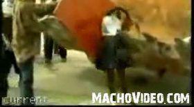 Video / Şocant! Cadavrele haitienilor sunt transportate cu excavatoarele!