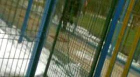 Video | Un bucureştean îl acuză pe arbitrul-asistent Mircea Orbuleţ că i-a furat iubita