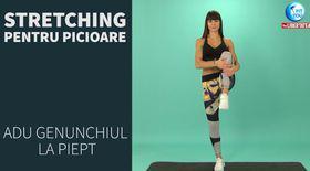 FIT YOU! Stretching pentru picioare cu Antrenor Diana Stejereanu
