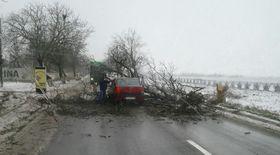 Județul Constanța este sub avertizare cod portocaliu de vreme rea. Unele drumuri au fost închise
