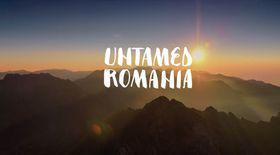 VIDEO România neîmblânzită, imagini fabuloase din pădurile României, într-un film britanic care ajunge azi și în România. Azi este Ziua Internațională a Pădurilor
