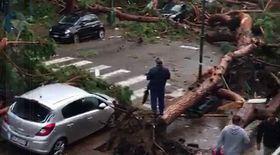 Imagini apocaliptice din timpul furtunii care a lovit Italia, în orașul Terracina. O stradă întreagă acoperită de arbori seculari