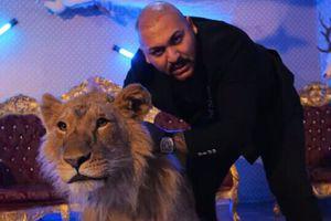Cui aparține leul din clipul lui Dani Mocanu. A fost găsit în urmă cu puțin timp