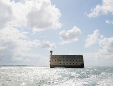 cele mai lichide opțiuni pe forturi