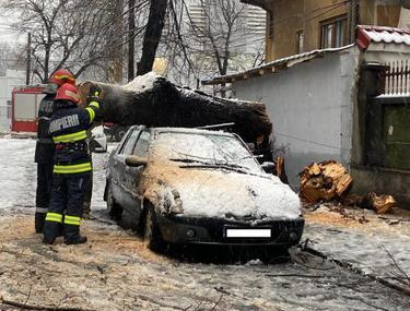 Haos în București, după prima ninsoare din an: mașini avariate, un stâlp de electricitate căzut și copaci prăbușiți