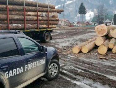 """În plină criză, Garda Forestieră își majorează salariile cu 15%. """"Chiar acum se fac noile state de plată"""""""