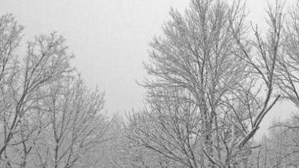 Vremea. VOR FI DOUĂ SĂPTĂMÂNI UNICE în istoria meteorologiei din România. BREAKING NEWS!.