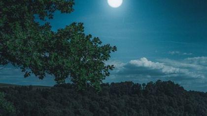 Luna Noua din 17 martie marchează finalul unui ciclu și începutul altuia nou pentru fiecare zodie. Previziunile complete ale Uraniei