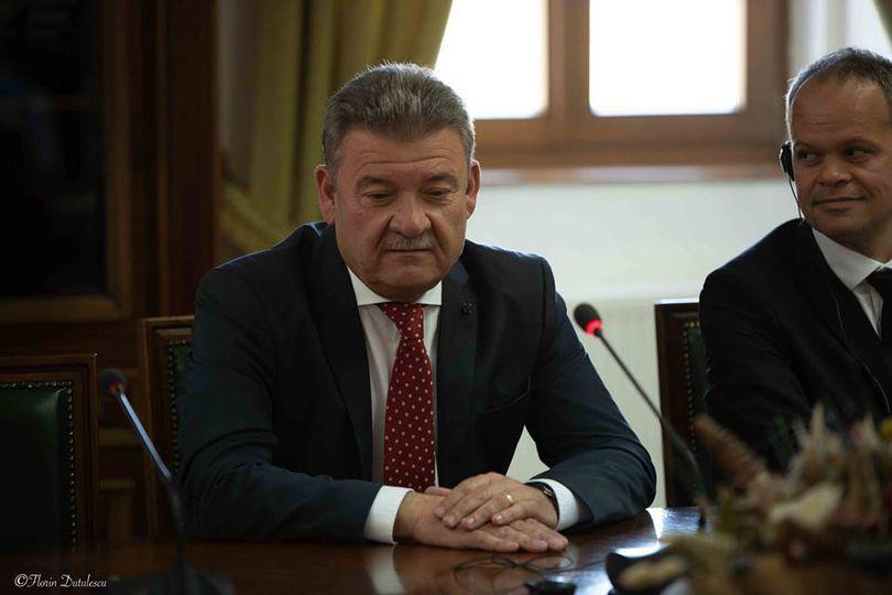 """Un primar PNL îi cere Vioricăi Dăncilă să plece din funcția de premier, după gafele din ultima vreme:""""Dănchill out! Luaţi o pauză, doamnă!"""