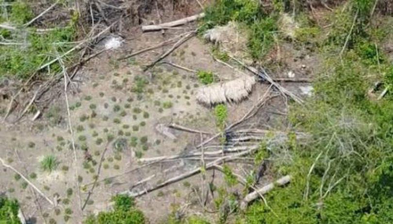 VIDEO | Imagini nemaivăzute cu un trib izolat din Amazon. Indigenii necontactați de oameni au fost filmați cu drona
