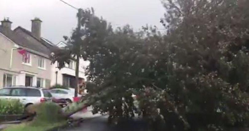 VIDEO | Marea Britanie lovită de furtuna Ali: vânt puternic, drumuri închise și traficul aerian blocat
